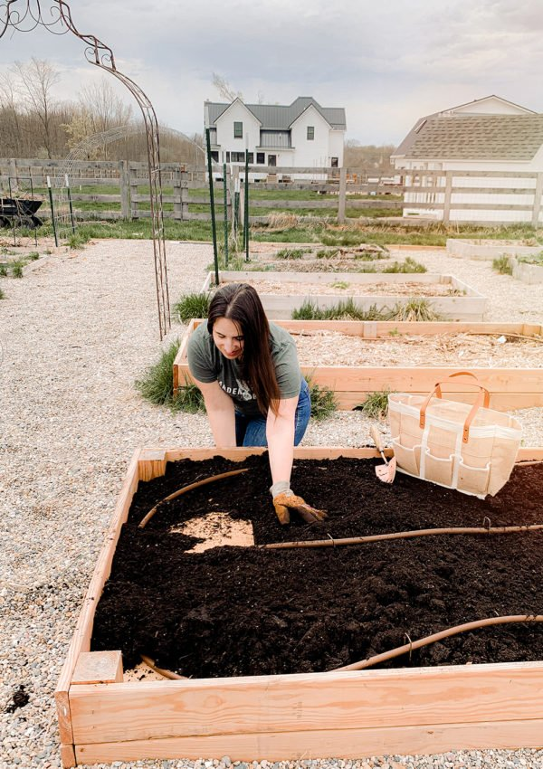 How to kill weeds naturally (and grass too!) in garden beds