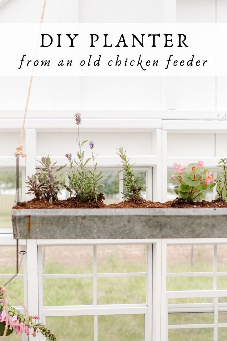 DIY planter from a chicken feeder