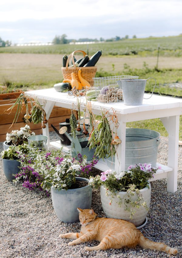 Creating an outdoor potting bench